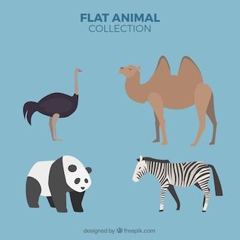 Bloco de quatro animais selvagens em design plano