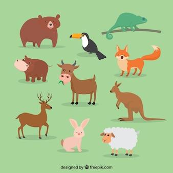 Bonito conjunto de grandes animais em design plano