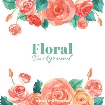 Bonito, fundo, aguarela, rosas