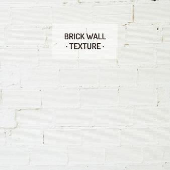 Branco tijolo textura da parede