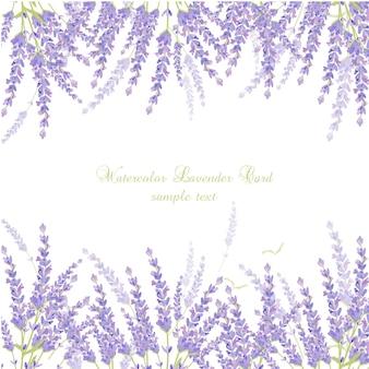 Cartão da alfazema da aguarela