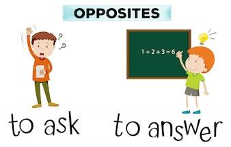 Cartão de palavra oposto para perguntar e responder