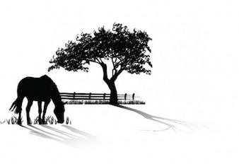 Cavalo pastando pacote vector silhouette