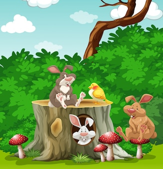 Coelhos e pássaro no jardim ilustração