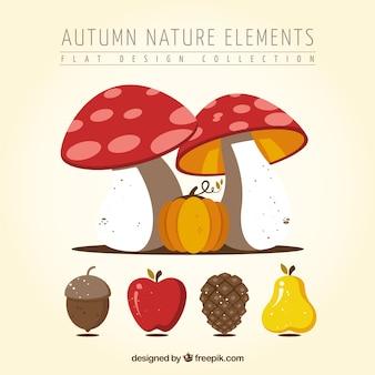 Cogumelos selvagens com outras frutas outonais
