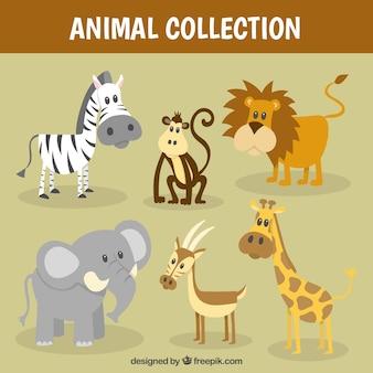 Coleção animal selvagem agradável