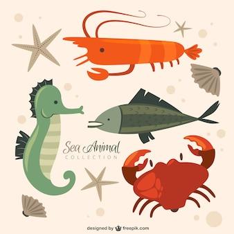 Coleção animal simpático mar