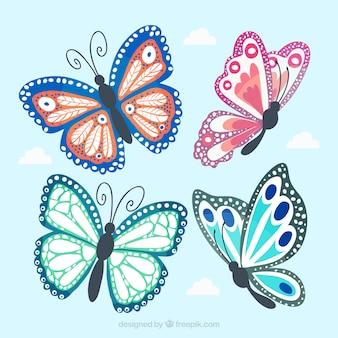 Coleção bonita da borboleta