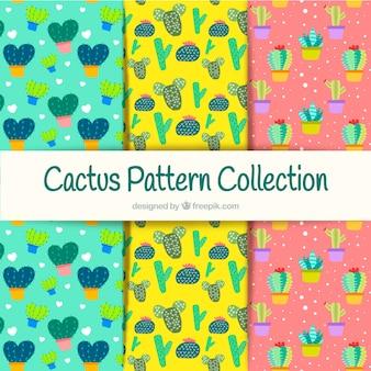 Coleção colorida de padrões de cactos