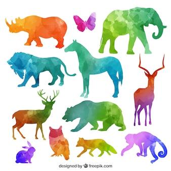 Coleção colorido silhuetas de animais