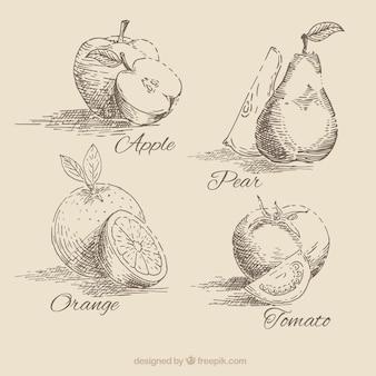 coleção da fruta desenhada mão