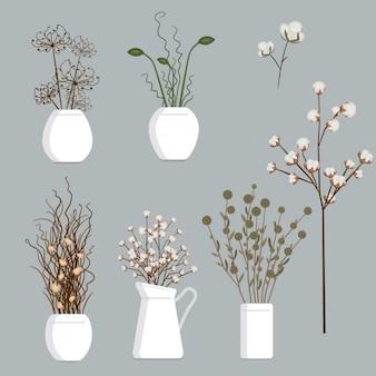 Coleção das flores secas