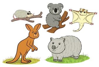 Coleção de animais australianos