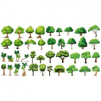 Coleção de árvores diferentes