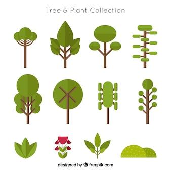 Coleção de árvores em design plano e arbustos