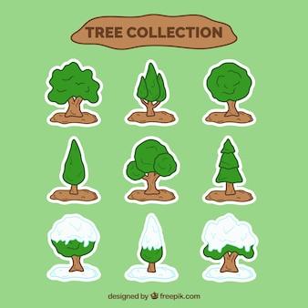 Coleção de árvores verdes e com neve