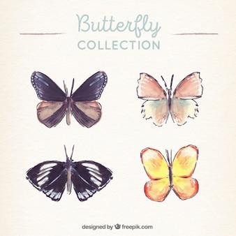 Coleção de borboletas aquarela