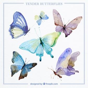 Coleção de borboletas decorativo aguarela