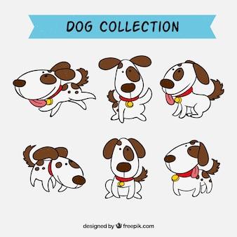 Coleção de cães desenhados a mão
