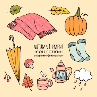 Coleção de elementos de outono desenhados à mão