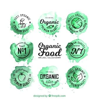 Coleção de etiquetas dos alimentos orgânicos no estilo da aguarela