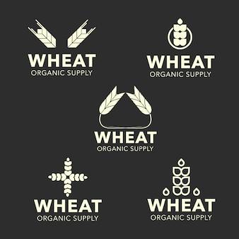 Coleção de logotipo de trigo