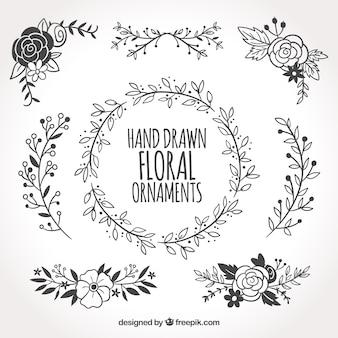 Coleção de ornamentos florais desenhados à mão