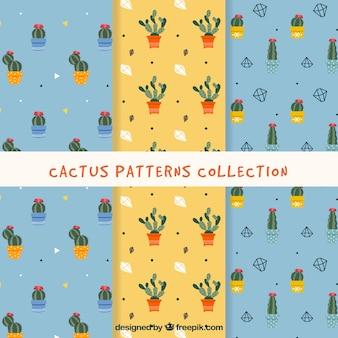Coleção de padrões de cactos