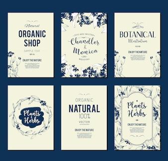 Coleção de panfletos para compras orgânicas