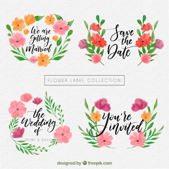 Coleção de projetos de casamento