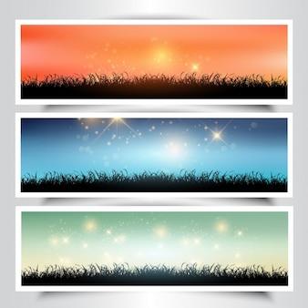 Coleção de três bandeiras da paisagem gramínea