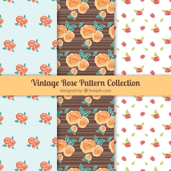 Coleção de três padrões com rosas coloridas