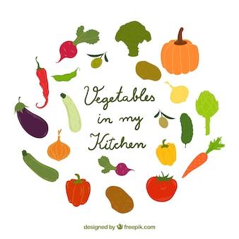 Coleção desenhada mão vegetais