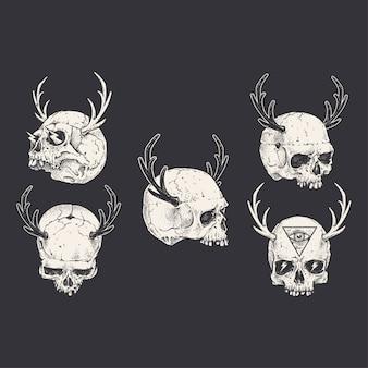 Coleção desenhados mão crânios