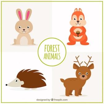 Coleção do animal linda floresta, desenhado mão