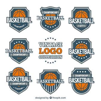 Coleção do logotipo do basquetebol do vintage