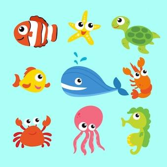 Coleção dos animais do mar
