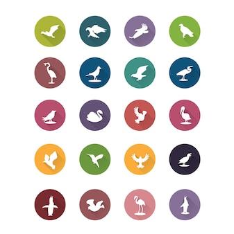 Coleção dos ícones do pássaro
