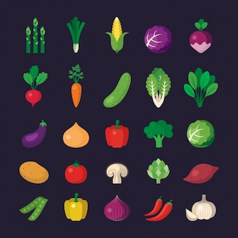 Coleção dos ícones do vegetal