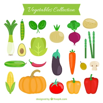 Coleção dos vegetais