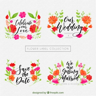 Coleção floral de design de casamento