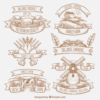 coleção logotipo da exploração agrícola esboçado