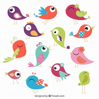 Coleção pássaros coloridos
