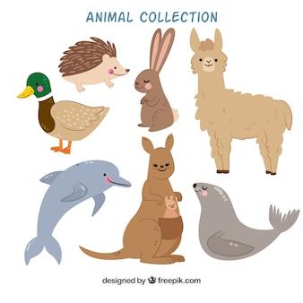 Coleção plana de animais sorrisos