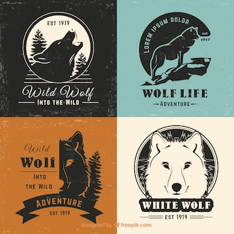 Coleção retro do logotipo do lobo do vintage