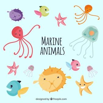 Coleção Sea Life