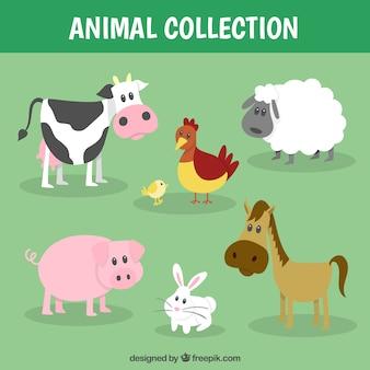 Coleção animal de fazenda engraçado