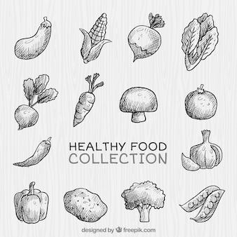 Coleta de vegetais saudáveis desenhada à mão
