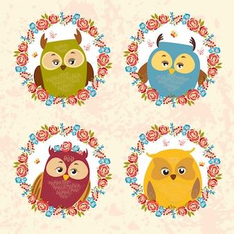 Colorido corujas set