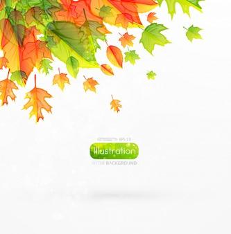 Composição web decoração de outono em branco
